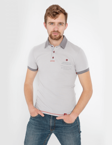 Men's Polo Shirt Wings. Color gray.  Technique of prints applied: embroidery, silkscreen printing.