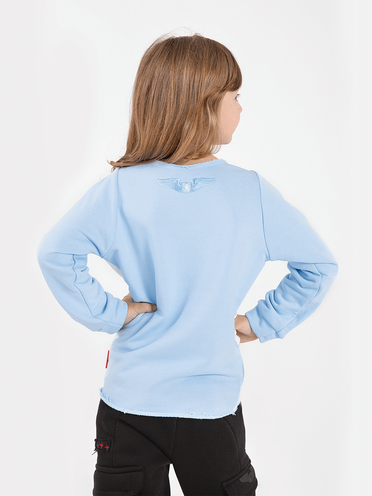 Kids Sweatshirt Flying Fishes. Color sky blue.  Material: 77% cotton, 23% polyester.