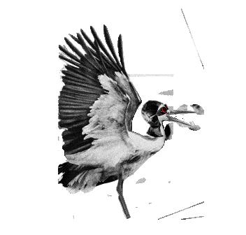 Лого Птахи