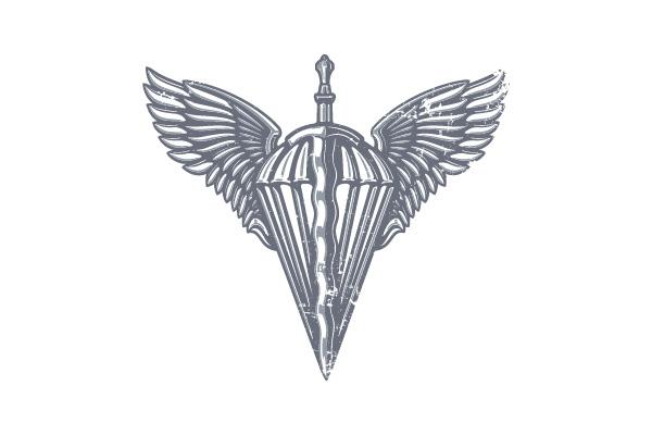 Лого ДШВ