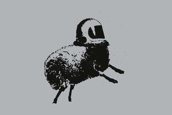 Лого FAMILY LOOK: MOLFARS' SECOND EXPEDITION